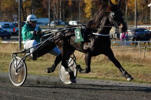 Gregor Mollyn. Foto: Karina Helgesen