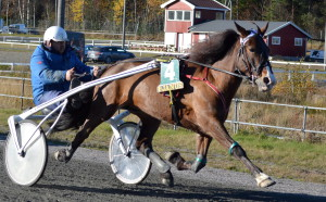 Tangen Ida. Foto: Ida Nielsen